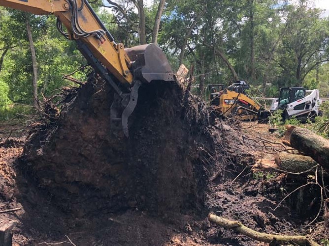 Schedule Land Clearing Services in Brandon & Plant City, FL